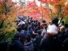 Япония,Киото
