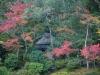 Япония, Нара.
