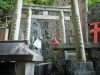 Япония, Киото, Fushimi Inari