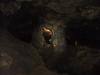Восточный Крым, Красная пещера (Кизил-Коба)