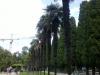 Крым, Месхор, парк