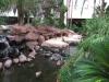 США, Лас-Вегас (Las Vegas), гоcтиница Flamingo