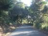 США, Калифорния, Old La Honda Rd