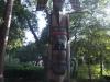 США, Калифорния, Стэнфордский университет, индейский идол