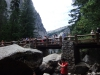 США, Калифорния, Yosemite, мост через ручей