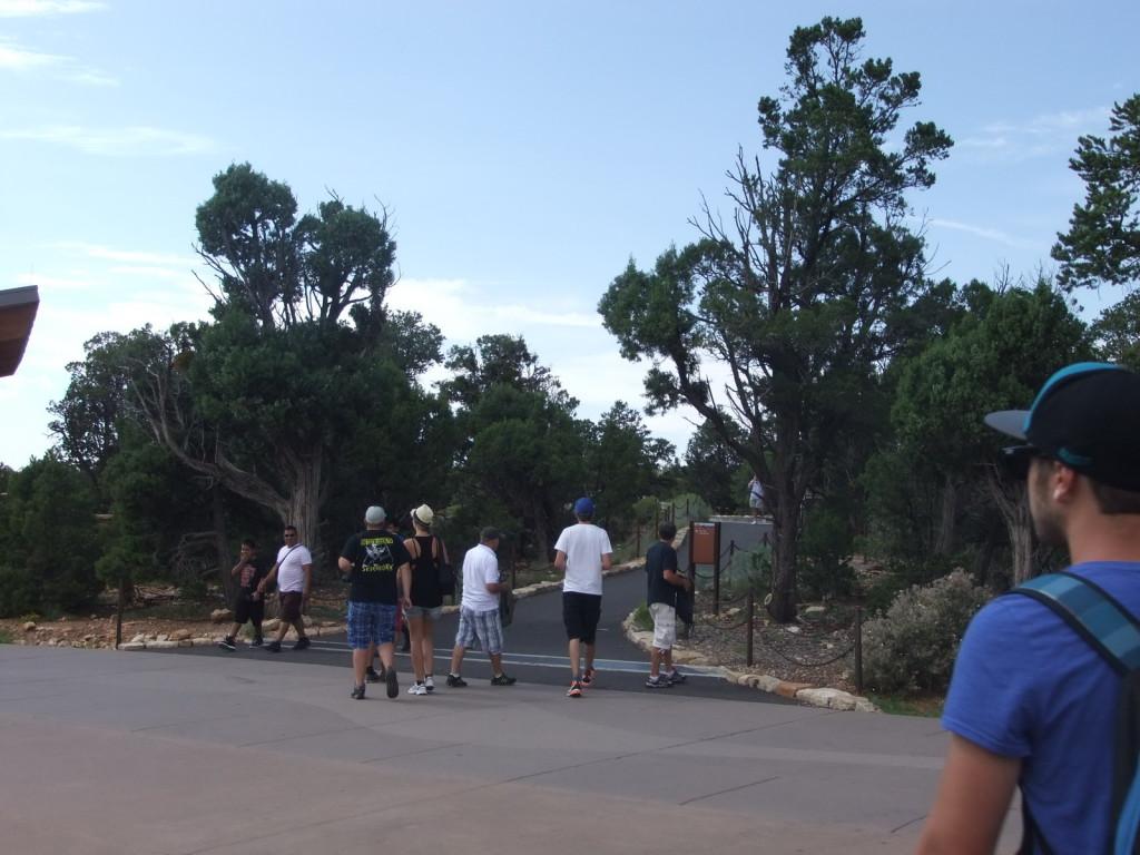 США, Grand Canyon (Гранд Каньон). Дорожка, ведущая к каньону